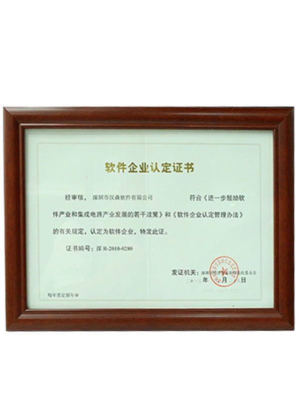 Software enterprise identification certificate